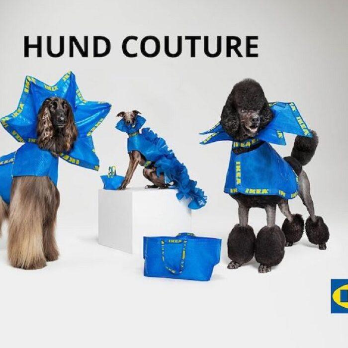 Ikea firma Hund Couture